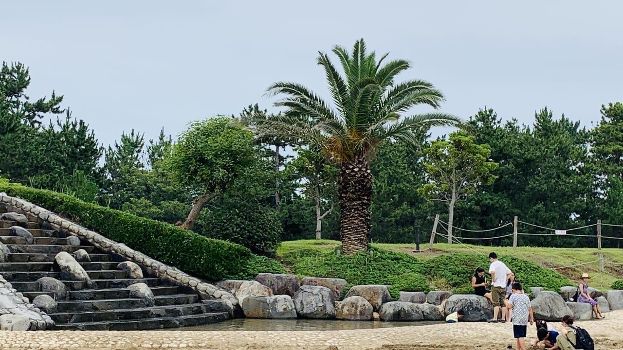 広野海岸公園の水浴びスポット